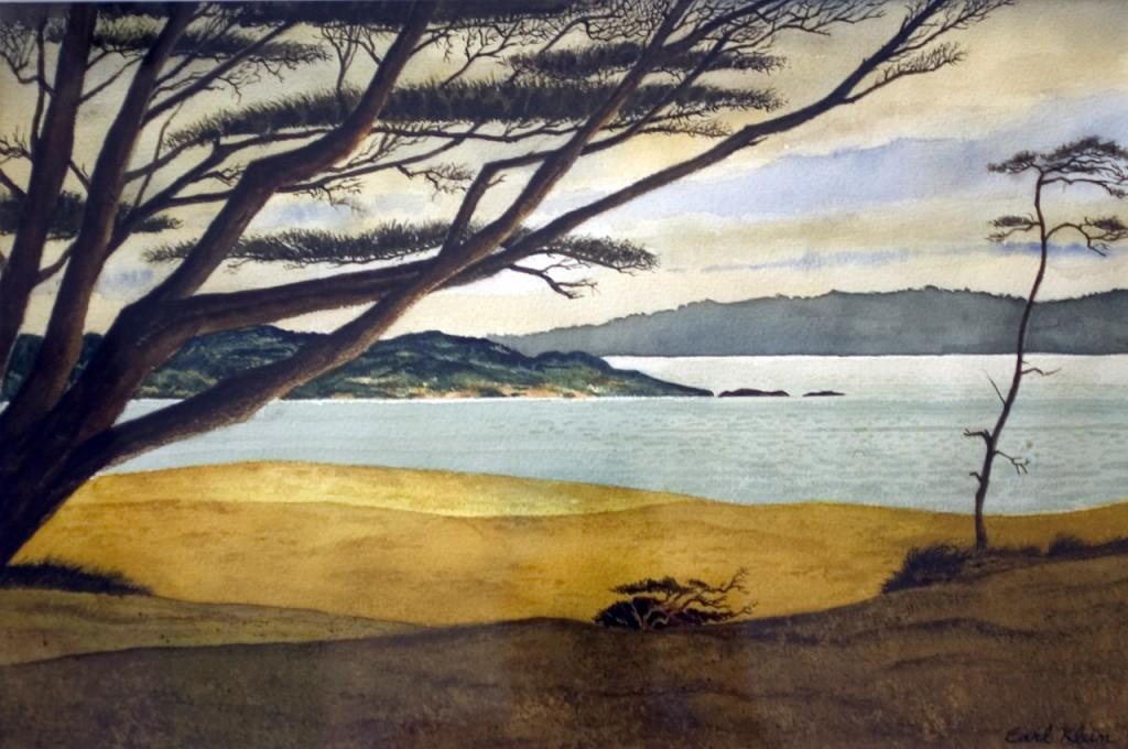 Monterey-Pines-1280